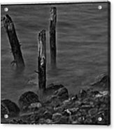 Posts In The Water Acrylic Print