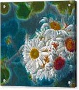 Pot Of Daisies 02 - S11bl01 Acrylic Print