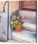 Potted Plant Front Of House Acrylic Print