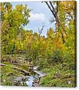 Poudre Walk-2 Acrylic Print by Baywest Imaging