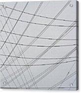Power Lines Fill The Sky Acrylic Print