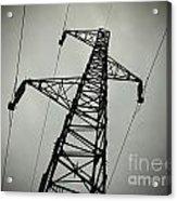Power Pole Acrylic Print