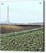 Powerlines And Plowed Fields Acrylic Print