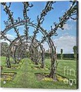 Powis Castle Garden Acrylic Print