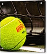 Practice - Tennis Ball By William Patrick And Sharon Cummings Acrylic Print