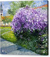 Prague Spring Loreta Lilacs Acrylic Print