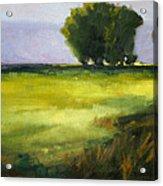 Prairie Light Acrylic Print