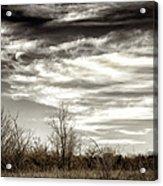 Prairie Winter Sky Acrylic Print