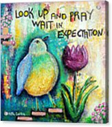 Praying And Waiting Bird Acrylic Print by Lauretta Curtis