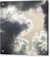 Praying For Rain Acrylic Print