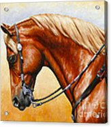 Precision - Horse Painting Acrylic Print