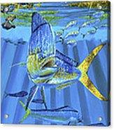 Predator Off0067 Acrylic Print