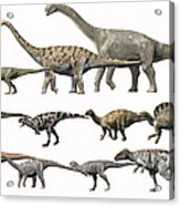 Prehistoric Era Dinosaurs Of Niger Acrylic Print by Nobumichi Tamura