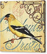 Pretty Bird 3 Acrylic Print