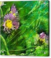 Pretty Little Weeds Photoart Acrylic Print