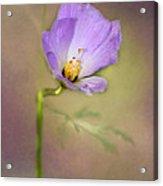 Pretty Purple Flower Acrylic Print