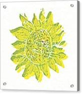 Pretty Sunflower  Acrylic Print by Lynn-Marie Gildersleeve