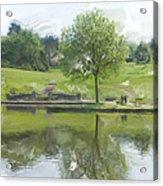 Pretty Tree In Park Picture.  Acrylic Print