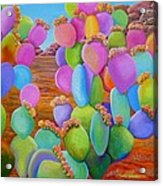 Prickly Pear Cactus-eye Candy Acrylic Print