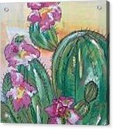 Prickly Pear Acrylic Print by Karen Carnow