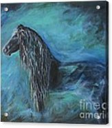 Pride Of Friesians Acrylic Print