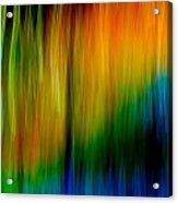 Primary Rainbow Acrylic Print