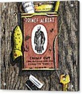 Prince Albert Nailed To The Wall Acrylic Print