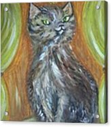 Princess Kitty Acrylic Print