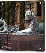 Princeton Tigers Acrylic Print
