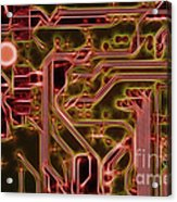 Printed Circuit - Motherboard Acrylic Print by Michal Boubin