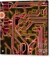 Printed Circuit - Motherboard Acrylic Print