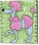 Prissy Poodle Acrylic Print