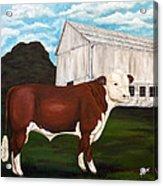 Prize Bull Acrylic Print by Michelle Joseph-Long