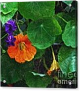 Prolonging Summer Acrylic Print