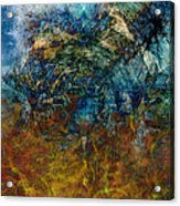 Prophecy Acrylic Print by Christopher Gaston