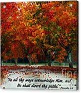 Proverbs 3 Acrylic Print