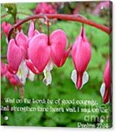 Psalms 27 14 Bleeding Hearts Acrylic Print by Sara  Raber