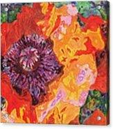 Psychedelia Acrylic Print