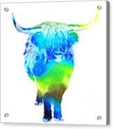 Psychedelic Bovine #2 Acrylic Print by Pixel  Chimp