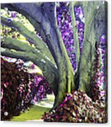 Psychedelic Purple Fuschsia Earthy Tree Street Landscape Los Angeles Cool Artistic Affordable Art Acrylic Print