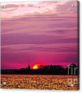 Psychoactive Sunset Acrylic Print