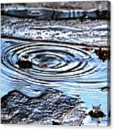 Puddle Water Droplet Acrylic Print