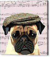 Pug In A Flat Cap Acrylic Print by Kelly McLaughlan