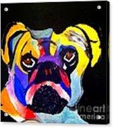 Pug Power Pup I Acrylic Print