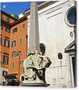 Pulcino Della Minerva Acrylic Print