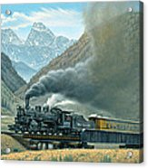 Pulling for Silverton Acrylic Print