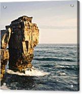 Pulpit Rock Jurassic Coast Acrylic Print