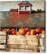 Pumpkin Crates Barn  Acrylic Print