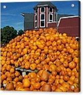 Pumpkin Heaven Acrylic Print