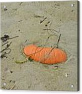 Pumpkin In The Sand Acrylic Print